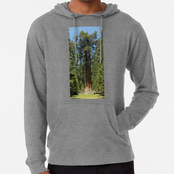 The Largest Tree in the World - GigaPan Lightweight Hoodie