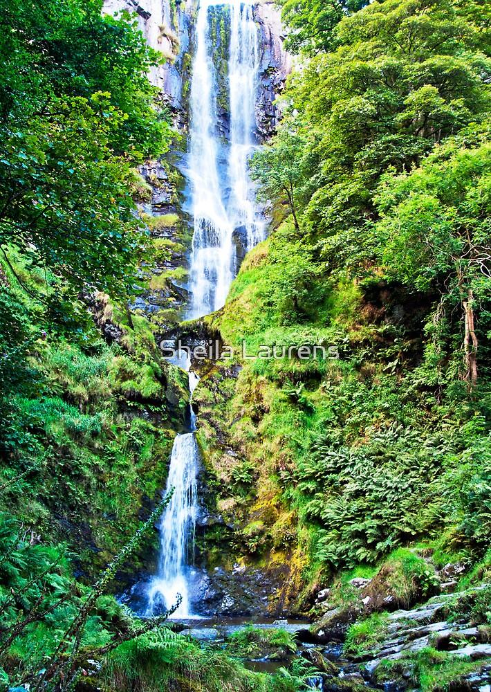 Pistyll Rhaeadr Falls by Sheila Laurens