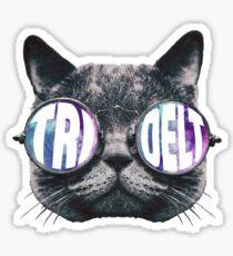 Tri Delta Cat Galaxy Sticker
