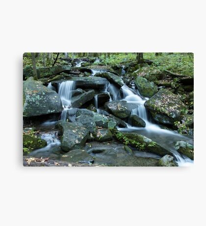 A Special Place Canvas Print
