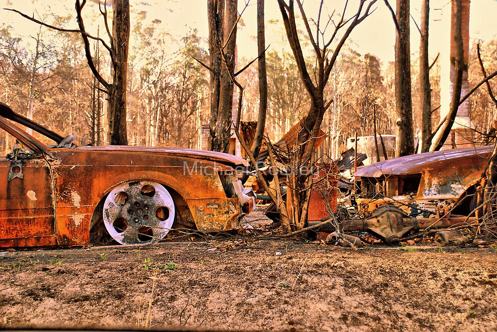 Bushfires a Timely reminder by Michael Rowley