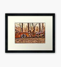 Bushfires a Timely reminder Framed Print
