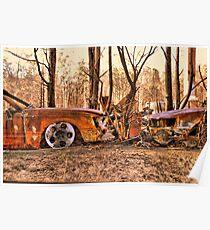 Bushfires a Timely reminder Poster