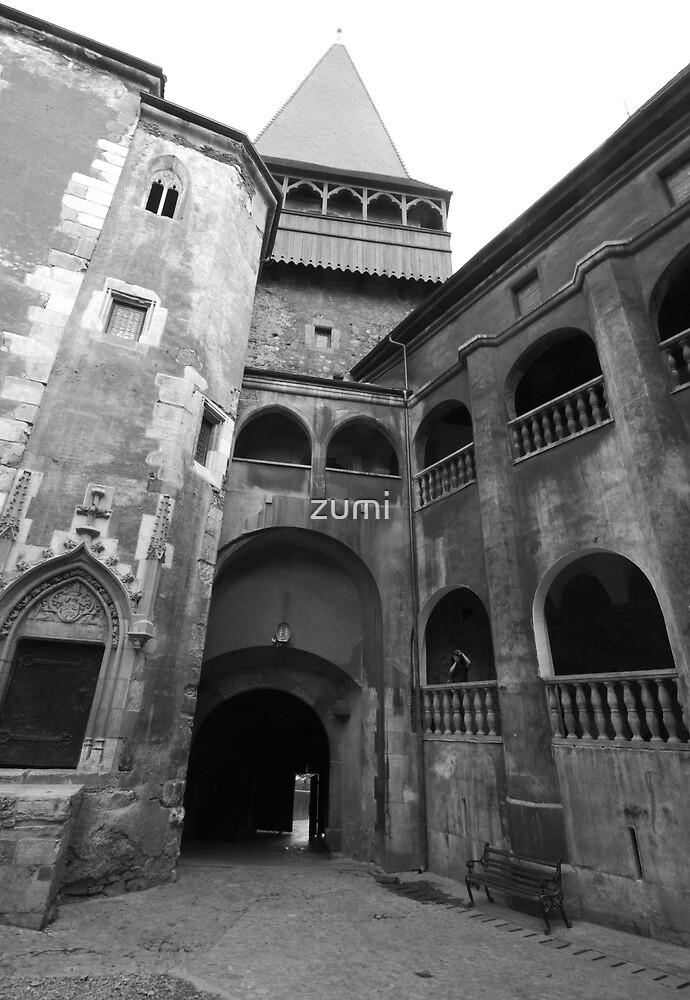 Vajdahunyadi vár (castle) - inner yard by zumi