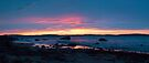 Taroona Sunrise pano 2 by Odille Esmonde-Morgan