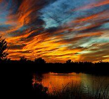 Paint the Sky  by Saija  Lehtonen