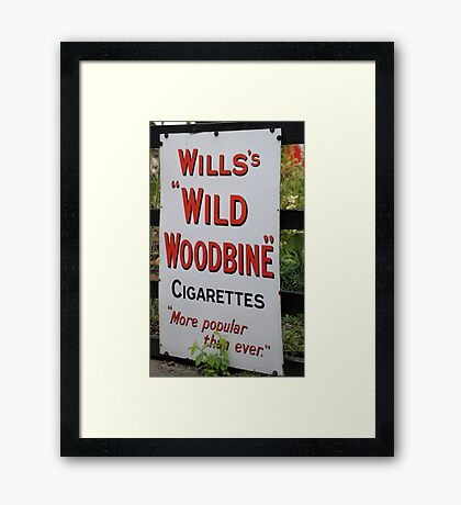 """Wild Woodbine"" Framed Print"