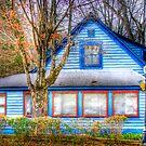 Story Inn Blue Cabin by David Owens