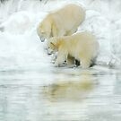 Winter fishing by Alan Mattison