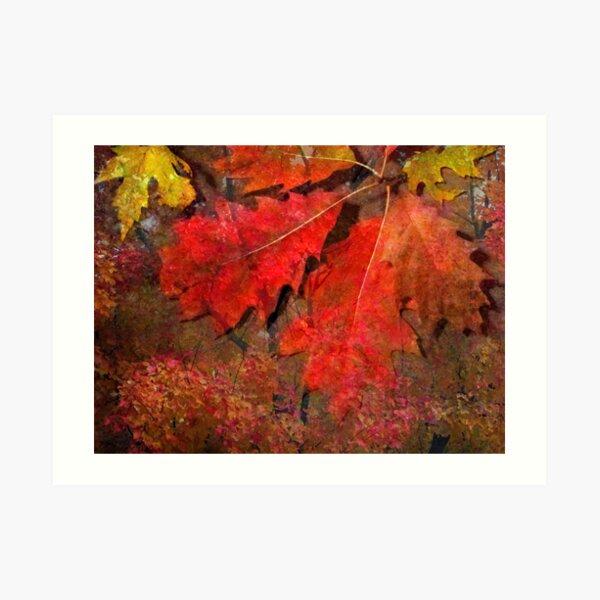 Glow of October Art Print