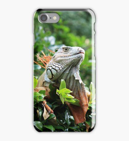Red Iguana iPhone Case/Skin