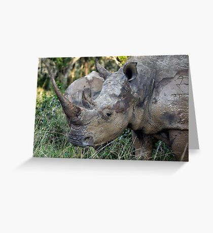 Now That Is A HORN ! Greeting Card