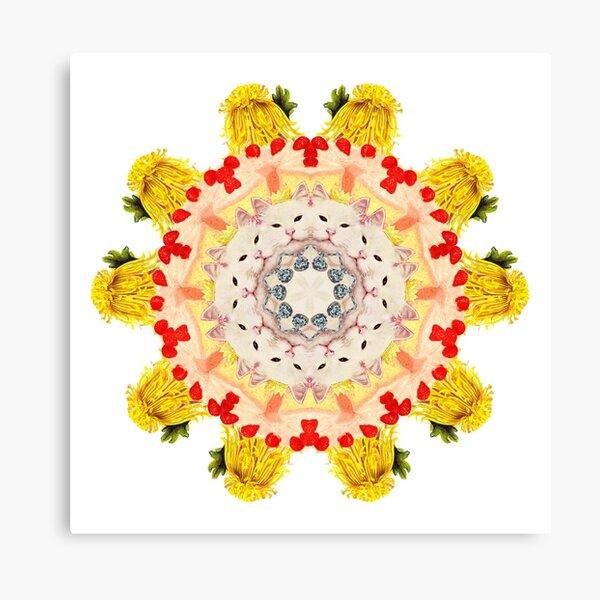 Royal Kitties, Cakes + Diamonds Mandala Canvas Print