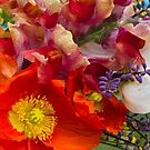 Spring Bouquet by picketty