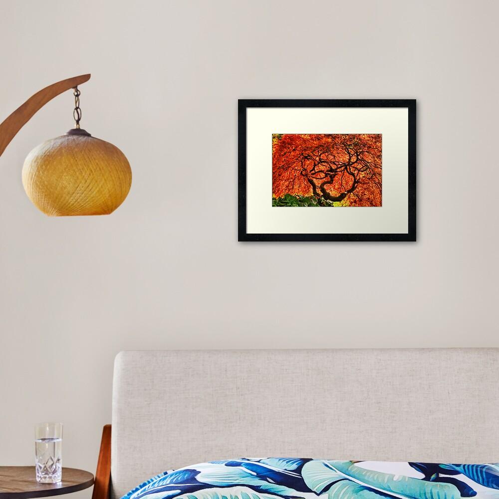 Maple Matrix Framed Art Print
