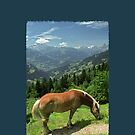 Horse at Kristberg (iPhone case) by Lenka
