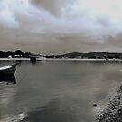 Noosa River Toned Down by jesskato