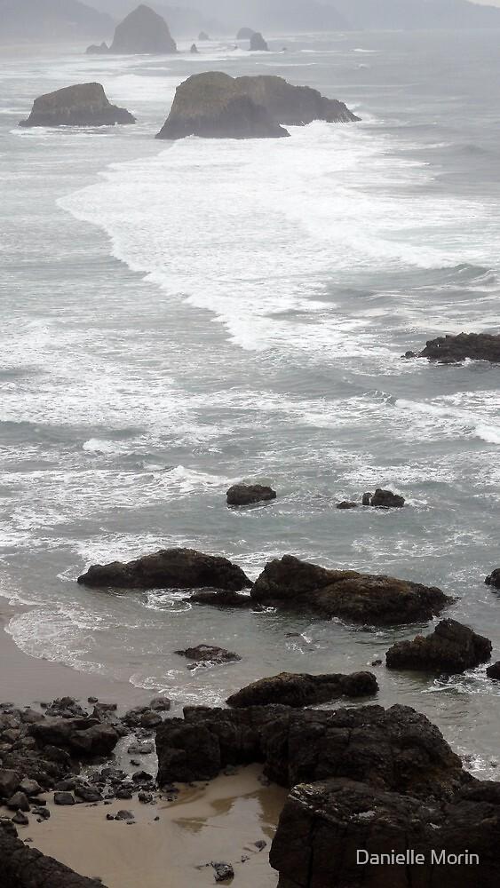 Oregon Coast by Danielle Morin