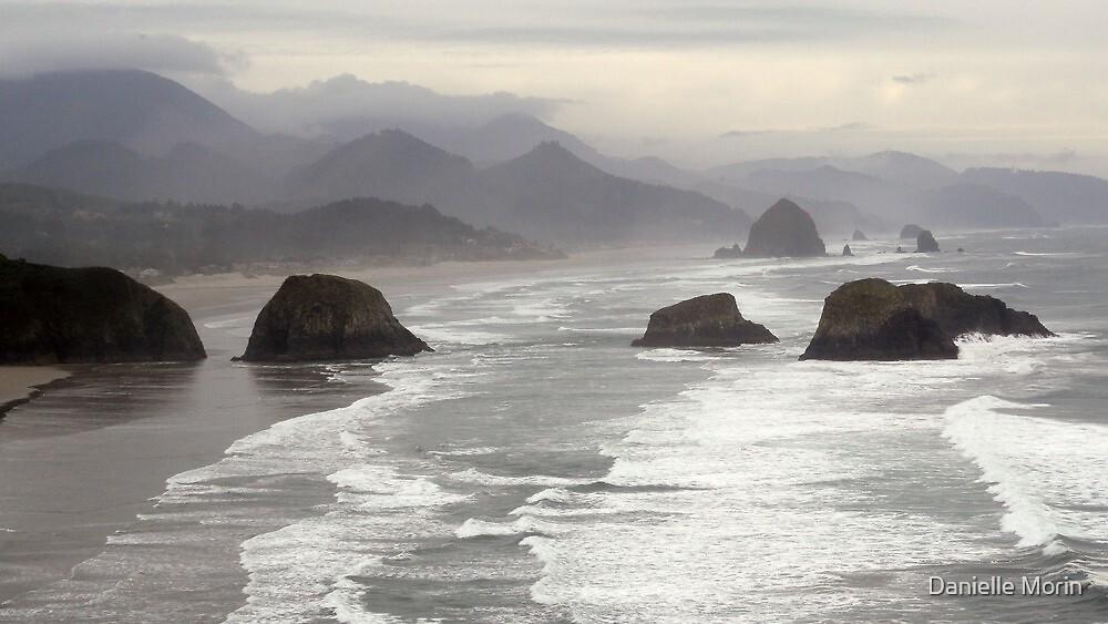 Coast by Danielle Morin