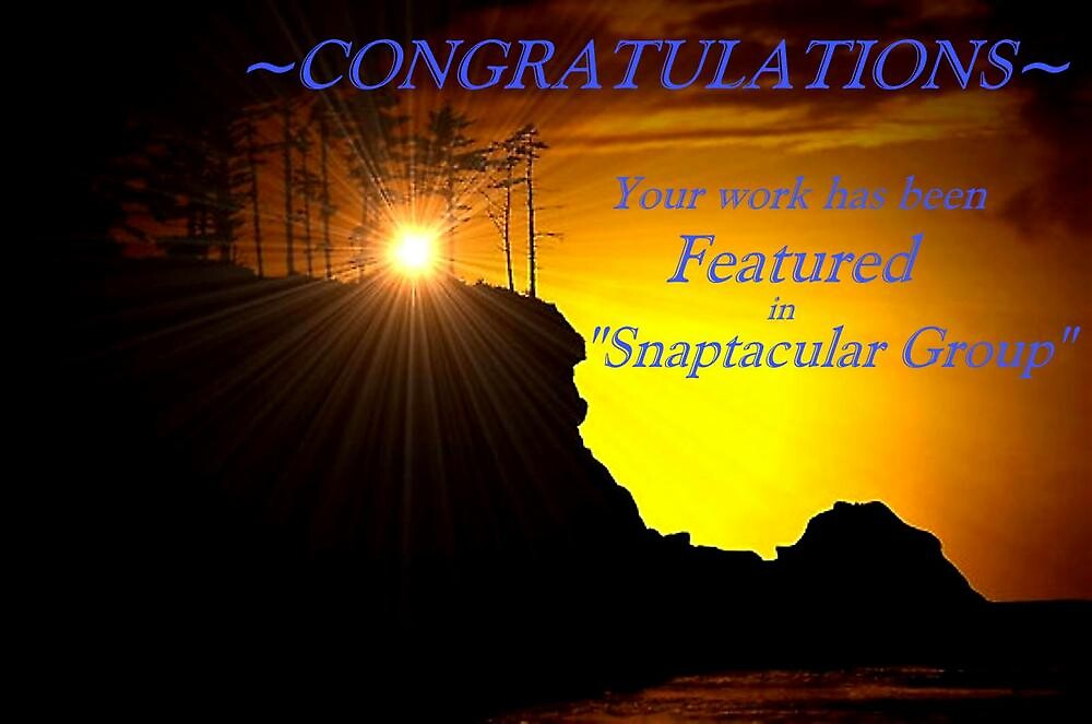 CONGRATULATIONS YOU'VE BEEN FEATURED by RoseMarie747