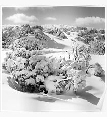 New snow, Perisher Valley Poster