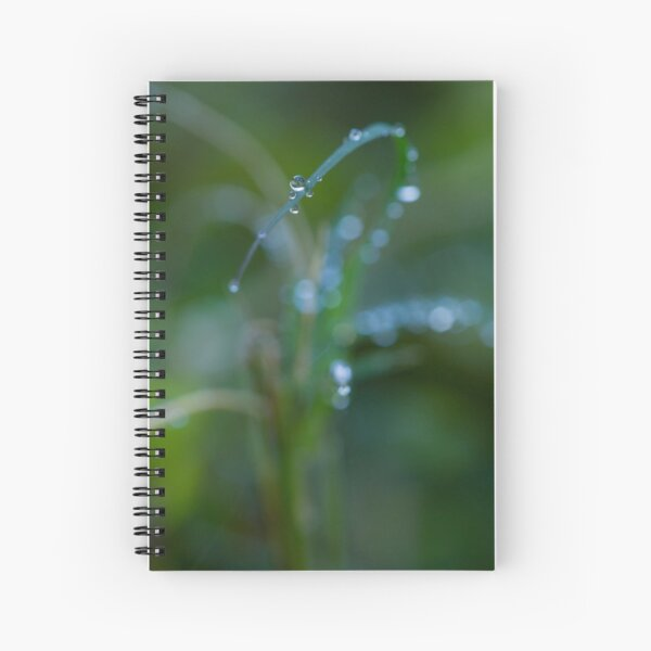 Water drops on leaves (2) Spiral Notebook