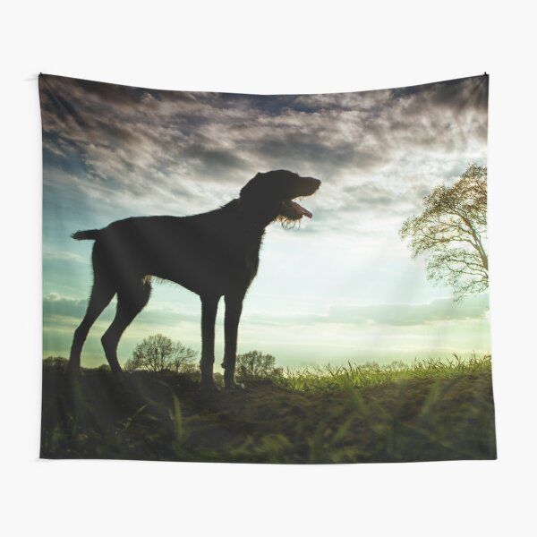 German Wirehaired Pointer Sunset Tapestry