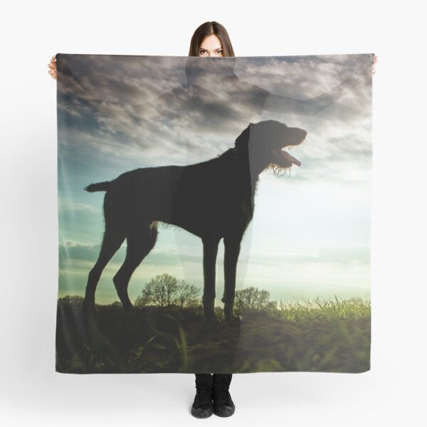 German Wirehaired Pointer Sunset Scarf