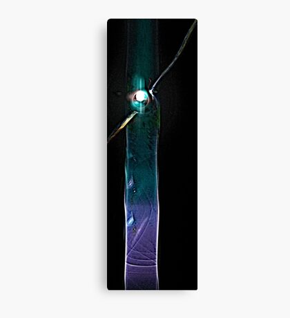Star Two Canvas Print