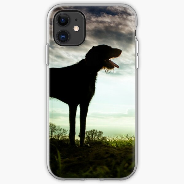 German Wirehaired Pointer Sunset iPhone Soft Case