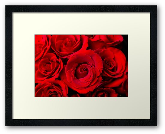 Red Rose Bouquet Dream by Bo Insogna