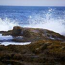 Ocean Waves - Maine by mattnnat