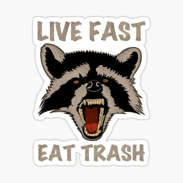 raccoon live fast eat trash  Sticker