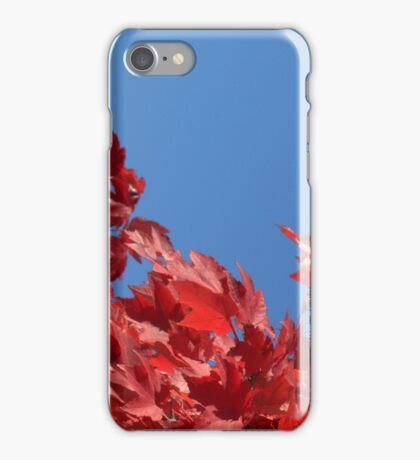 Autumn Sky iPhone Case/Skin