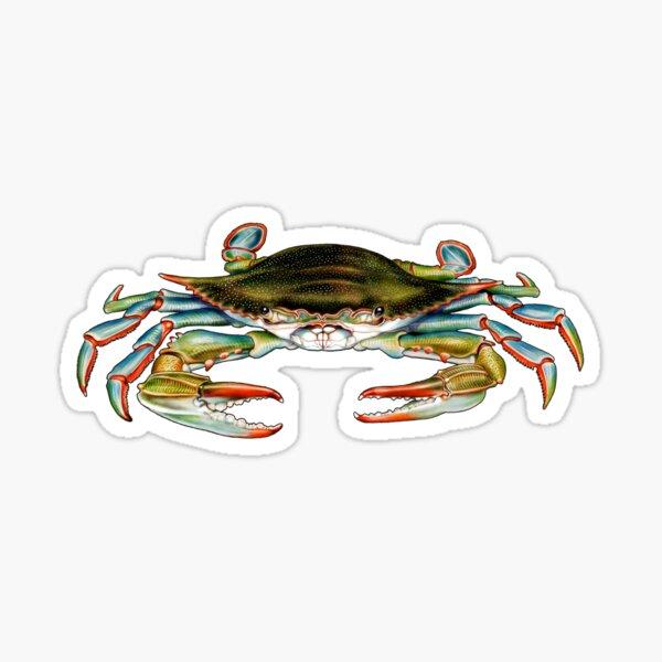 Blue Crab Sticker