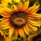 Sunfractal by Chris Cherry