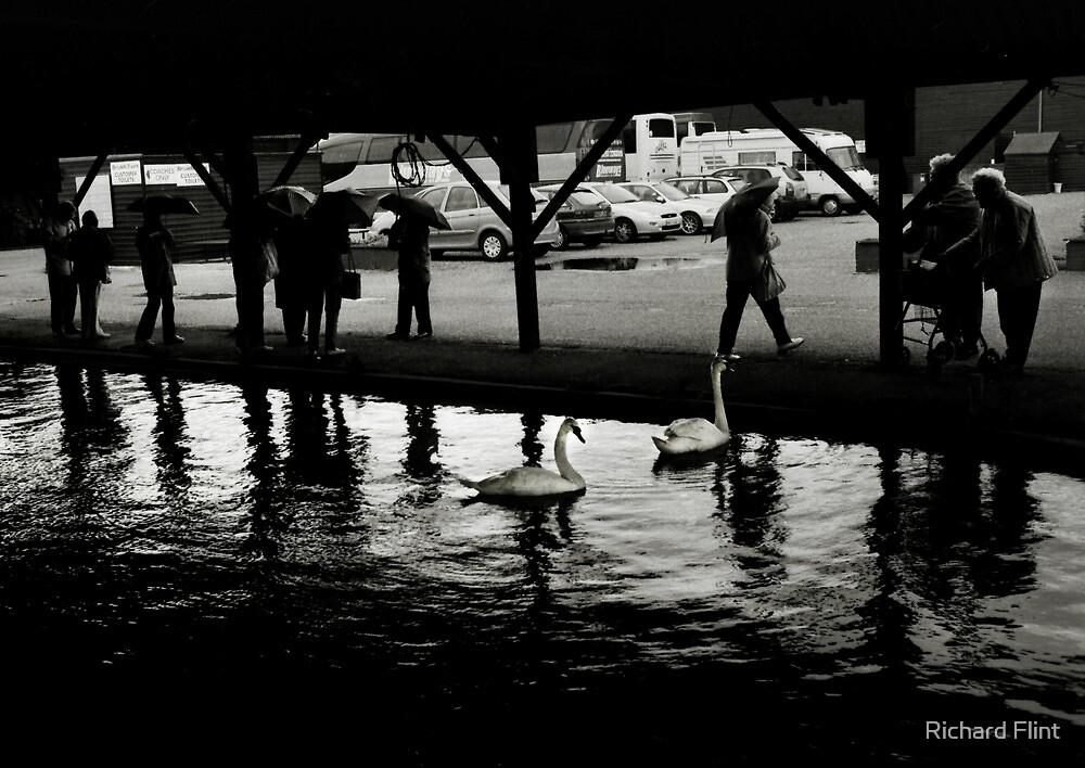 Rain in Wroxham by Richard Flint