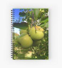 Cuaderno de espiral Bunch of Apples