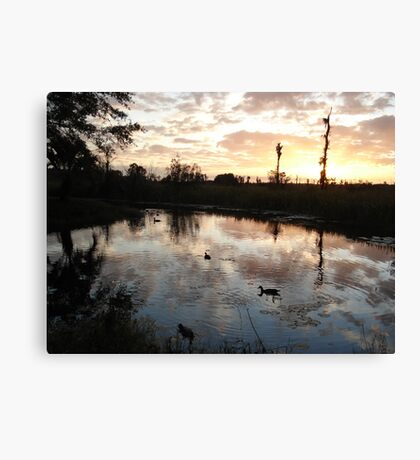 SUNSET WITH MUSCOVIES (ECONFINA CREEK, FL) Canvas Print
