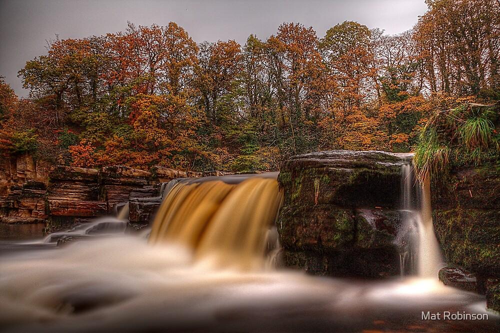 Autumn In Richmond (2) by Mat Robinson