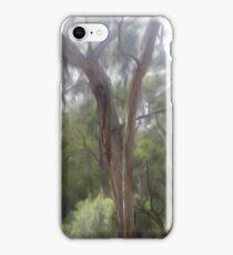 Allen St. Lorne iPhone Case/Skin
