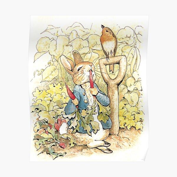 Peter Rabbit dans le jardin - Beatrix Potter Poster