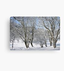 Cwm in snow Metal Print
