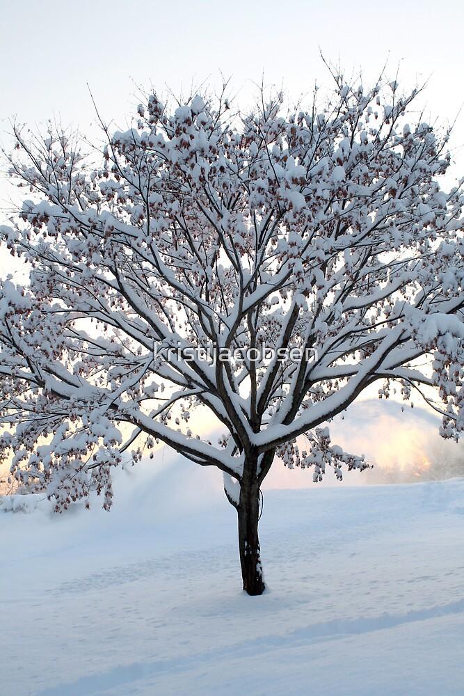 Winter Wonderland by kristijacobsen
