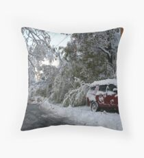 Blizzard!  2011! Throw Pillow
