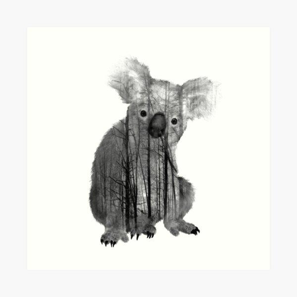 Australian Misty Forest Koala Bear Art Print