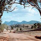 Flinders Ranges by Tim Coleman