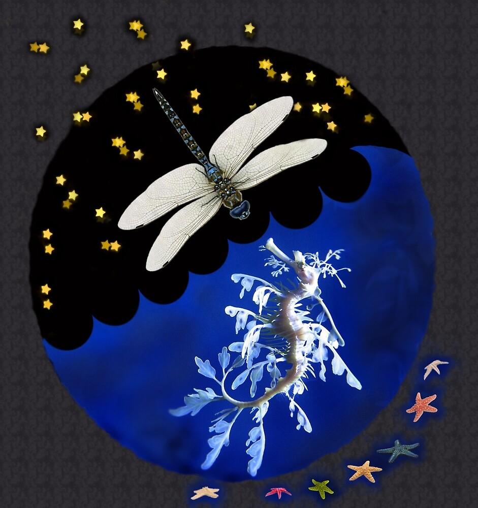 Dragonfly & Seadragon by TimTv