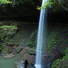Broke Leg Falls by Kent Nickell