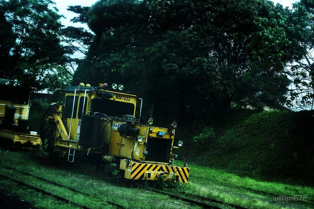 train by william672